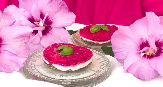 Gâteau Cru à la Framboise Sans Gluten et Vegan
